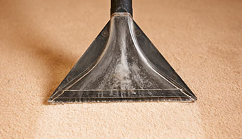 Carpet Cleaning Digital Marketing Solutions